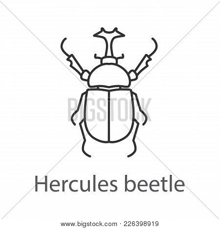 Hercules Beetle Linear Icon. Insect. Dynastes. Thin Line Illustration. Contour Symbol. Vector Isolat
