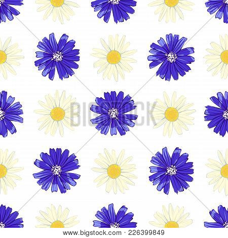 Floral Seamless Pattern With Chicory And Camomile Isolated On White Background. Cute Flowers. Summer