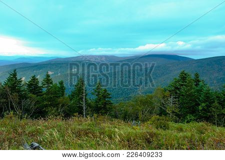 View On The Wood, Ridges And The Sky