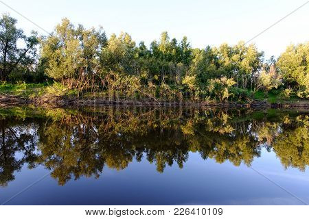 View On The Lake And Reflection Of The Wood Ashore