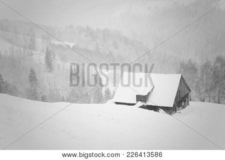 Winter snowy landscape at Bran, Transylvania, Romania