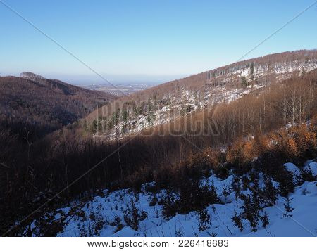 Snow Covered Woodland At Beskid Mountains Range Landscapes In Jaworze Near City Of Bielsko-biala In