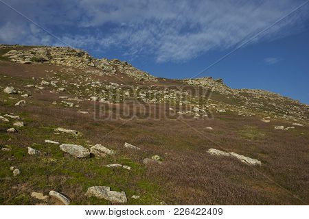 Rocky Outcrop In The Central Area Of Carcass Island In The Falkland Islands