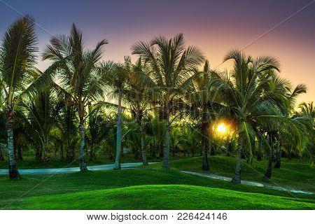 Golf Course In The Tropical Island. Punta Cana Beach Resort, Dominican Republic
