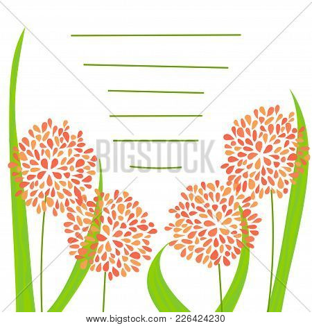 Floral Greeting Card With Lines For Text. Stock Vector Illustration With Orange Flowers And Green Le