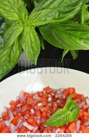 Tomatoe Salsa With Basil