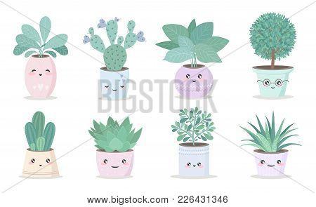 Cute House Plant In Flower Pot