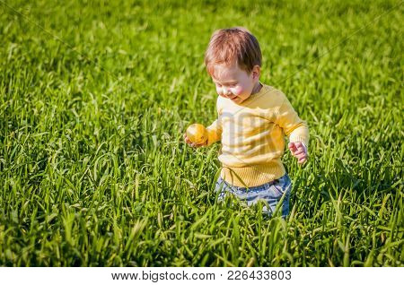 Cute And Happy Caucasian Baby Boy In The Green Field With A Yellow Lemon In His Hands.