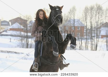 Young Woman Riding On Black Horse In Snowy Countryside - Steed Stood On Its Hind Legs, Telephoto Sho