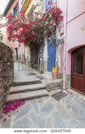 Collioure,france- June 17,2011:narrow Street Village View, Collioure In Cote Vermeille Coast.france.