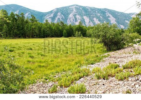 Summer Mountain Landscape. View Of The Hills And Meadows On Lake Baikal. Buryatia