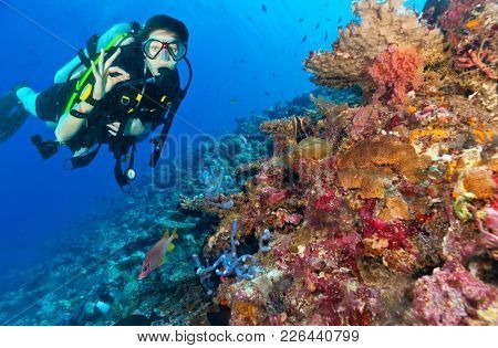 Young woman scuba diver exploring coral reef and showing ok sign, underwater sport and activities