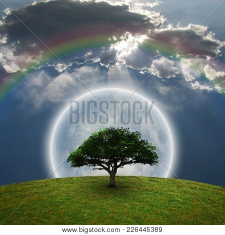 Green Tree. Bright moon and rainbow. 3D rendering.