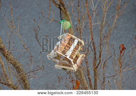 House For Birds With Feed For Them - Aviary.