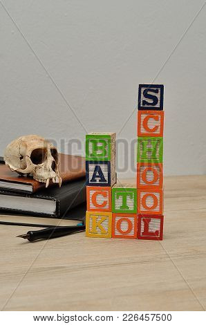 Back To School Spelled In Colorful Blocks With A Fountain Pen And A Monkey Skull