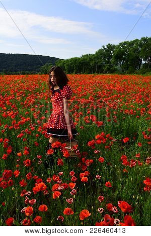 Woman With Books, Education, Business, Grammar. Poppy, New Technology, Remembrance Day. Opium Poppy,
