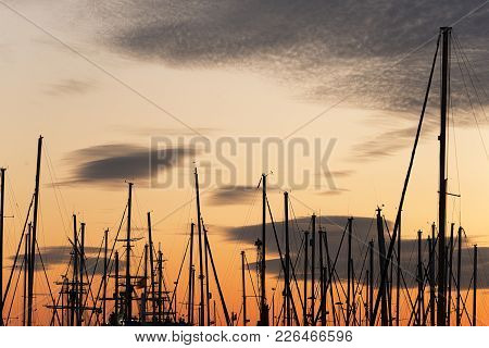 Masts Of Boats During A Sunset In The Port
