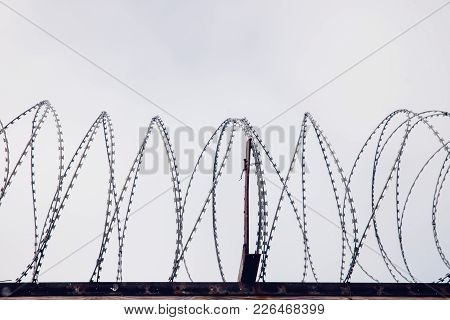 Barbed Wire. Wall Border Between The Us And Mexico