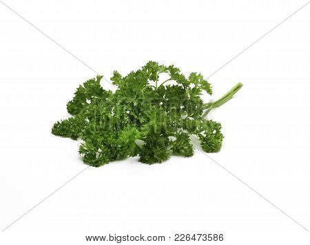 A Pile Of Curley Leaf Parsley Leaves On A White Background