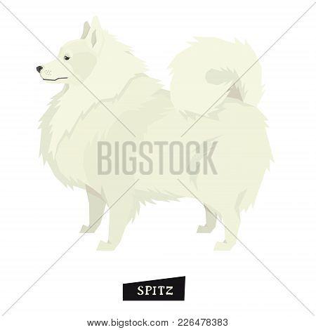 Dog Collection Spitz Geometric Style Isolated Object Set