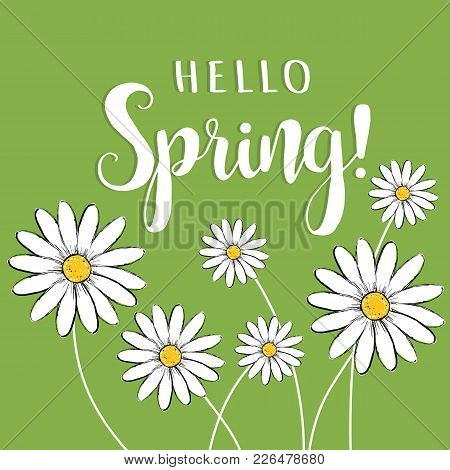 Hello Spring! Hello Spring Floral Vector Illustration With Daisies. Hello Spring Card, Poster For De