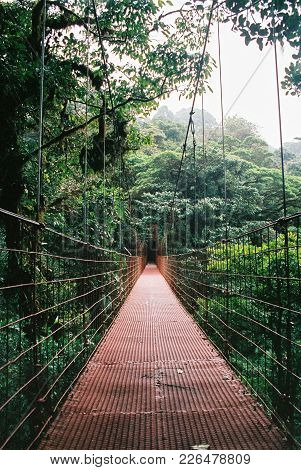 Red Hanging Bridge In One Of The Most Famous National Parks Of Costa Rica: Monteverde Cloud Forest.