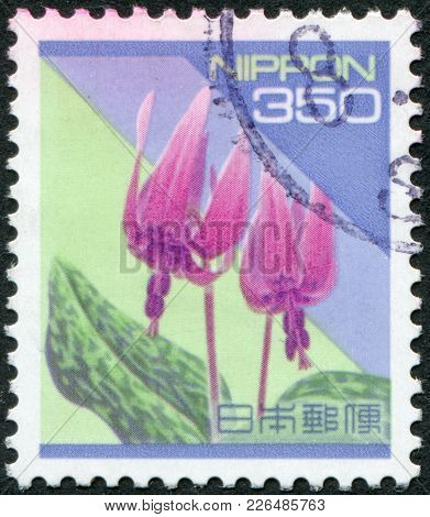 Japan - Circa 1994: A Stamp Printed In Japan, Shows A Flowering Erythronium Dens-canis, Circa 1994