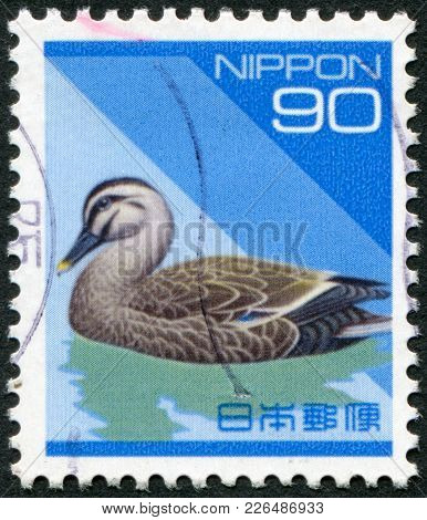 Japan - Circa 1994: A Stamp Printed In Japan, Depicts Spotbill (anas Poecilorhyncha), Circa 1994