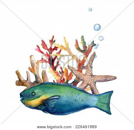 Watercolor Nautical Border With Parrotfish. Hand Painted Underwater Illustration With Parrotfish, St