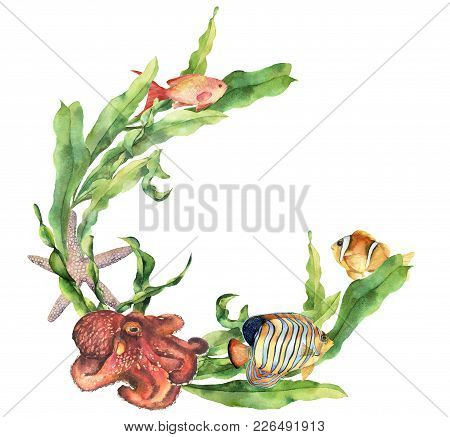 Watercolor Nautical Border With Octopus. Hand Painted Underwater Illustration With Laminaria Branch,