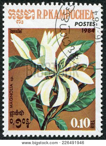 Kampuchea-circa 1984: A Stamp Printed In The Cambodia, Depicts A Flower Magnolia (disambiguation), C