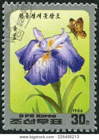North Korea - Circa 1986: A Stamp Printed In North Korea, Shows A Flower Iris, Circa 1986