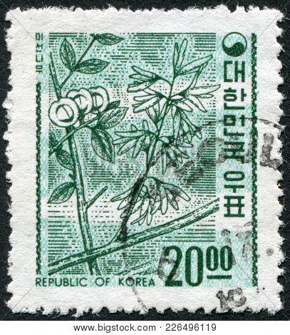 Korea - Circa 1963: A Stamp Printed In Korea, Shows A Deciduous Plant Abeliophyllum (white Forsythia