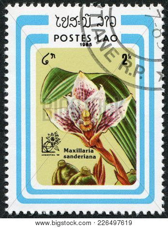 Laos-circa 1985: A Stamp Printed In The Laos, Depicts A Flower Maxillaria Sanderiana, Circa 1985