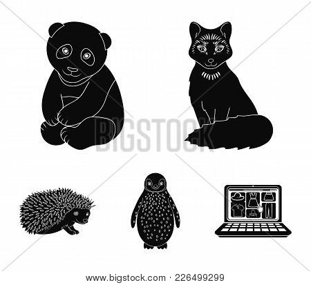Fox, Panda, Hedgehog, Penguin And Other Animals.animals Set Collection Icons In Black Style Vector S