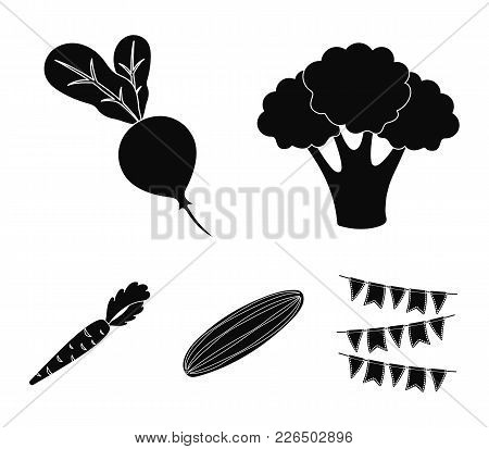 Broccoli Cabbage, Radish, Green Cucumber, Carrots With Tops. Vegetables Set Collection Icons In Blac