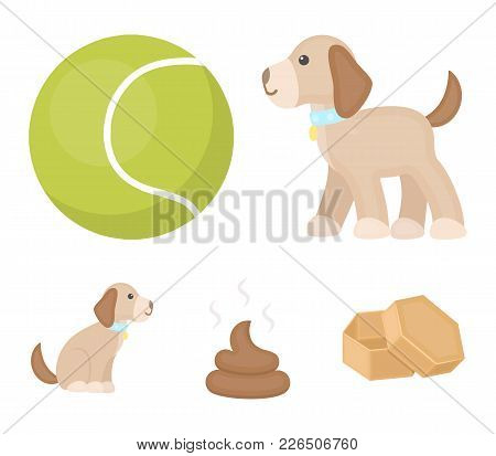 Dog Sitting, Dog Standing, Tennis Ball, Feces. Dog Set Collection Icons In Cartoon Style Vector Symb