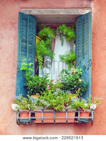 Old Window with flowers