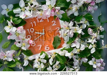 Bright Orange Wall Clock With White Numbers And Silver Arrows Surrounded By Luxurious Multiple White