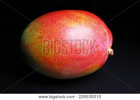 Whole Mango On Black Reflective Studio Background. Isolated Black Shiny Mirror Mirrored Background F