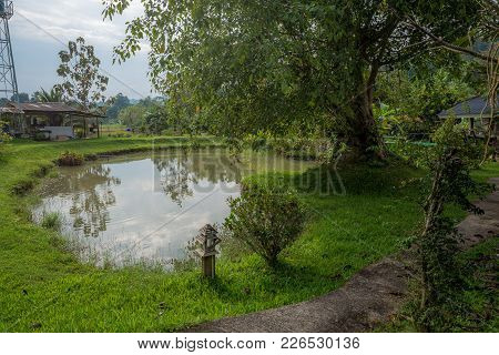 Pond In The Garden With Plant, Tree And Hut In Countryside, Traveling In Thailand