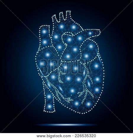 Polygonal Human Heart In Low Poly Polygon Style Illustration With Connecting Points Dots , Isolated