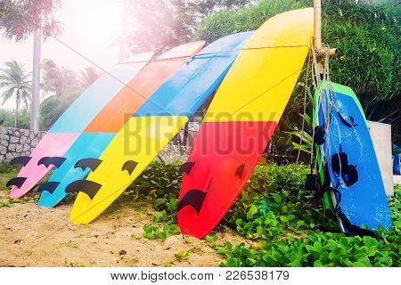 Surfboards Are On The Beach. Multicolored Surfboards Dry On The Sand.