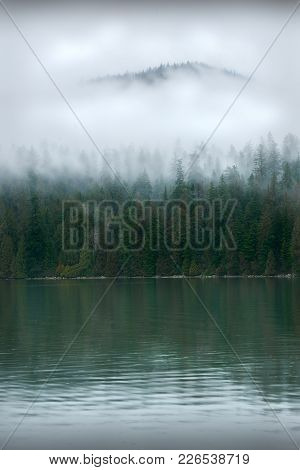 Pacific Northwest Coastal Mist. Lush views on a damp day across Port Moody Arm. poster