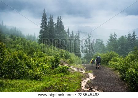 Couple of tourists going on a forest path in the fog in rainy wether