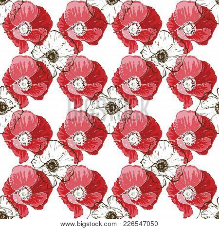 Seamless Pattern With Poppies Flower On White Background. Vector Set Of Blooming Floral For Wedding