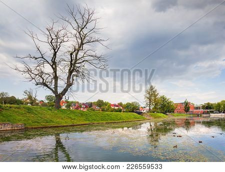 Pond Poplavok In A Summer Day. Kaliningrad. Russia