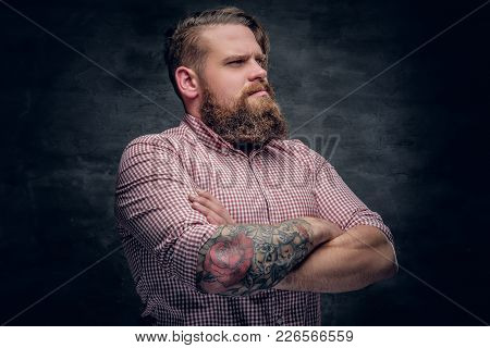 Studio Portrait Of Bearded Male With Crossed Tattooed Arms, Dressed In A Pink Plaid Shirt.