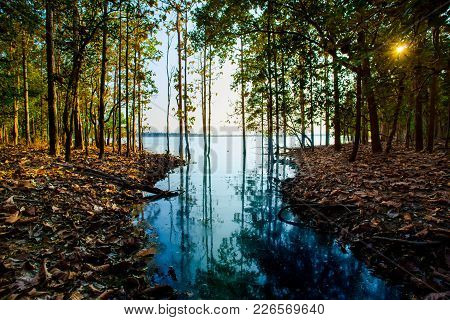 Flooding In Rural Areas. Panorama Of Village Landscape With Views Of The River And The Trees In The