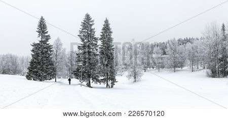 Umea, Sweden On January 13 View Of A Park With Newly-fallen Snow On January 13, 2018 In Umea, Sweden